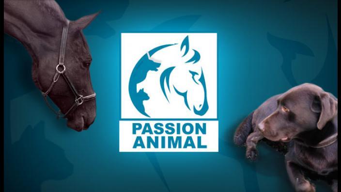 Image du programme passion animal