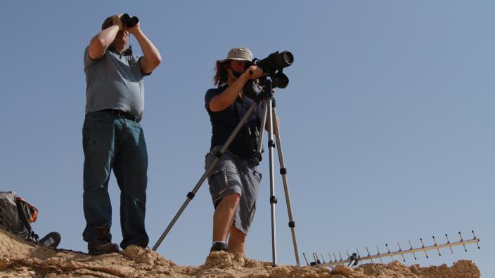 Image du programme Le voyage des oiseaux migrateurs - Escale sur la mer Rouge