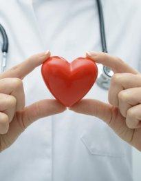Les organes artificiels,