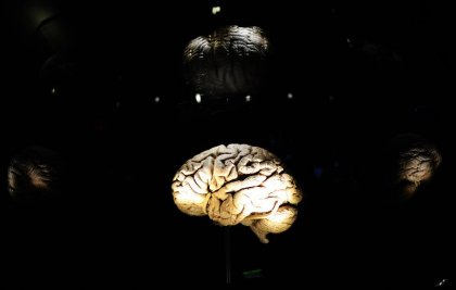 Neurosciences: que se passe-t-il quand on se souvient ?