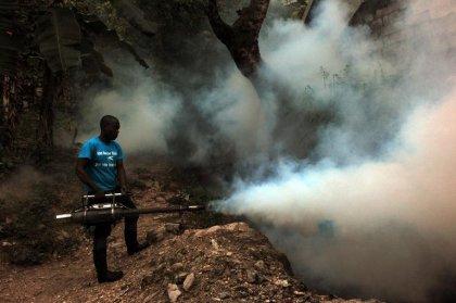 Guadeloupe: l'épidémie de chikungunya gagne en intensité