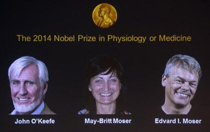 Le Nobel de médecine récompense des pionniers du GPS cérébral