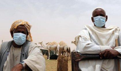 Arabie: poussée des cas de MERS selon les chiffres officiels