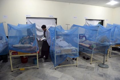 Dengue: Sanofi annonce des résultats positifs de Phase III pour son vaccin