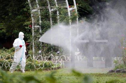 Japon: 22 cas autochtones de dengue, chasse aux moustiques à Tokyo