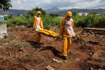 Ebola: le cap des 4.000 morts est franchi, 4.033 décès