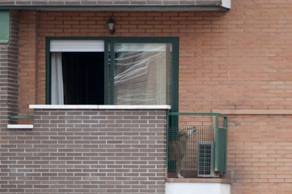 Ebola: des animaux à l'être humain, quels risques?