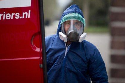 Grippe aviaire aux Pays-Bas: 8.000 canards vont être abattus