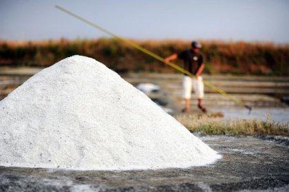 L'excès de sel tue plus de 1,6 million de personnes par an dans le monde