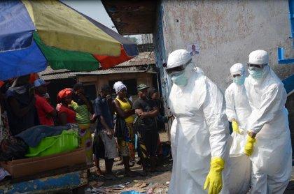 Ebola: premiers essais sur l'homme du potentiel vaccin de J&J