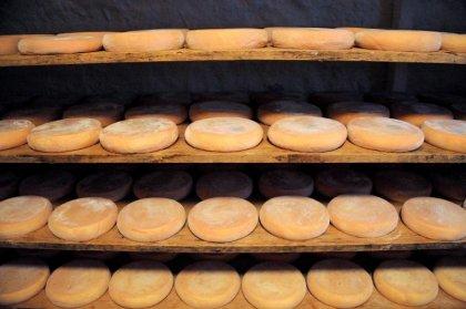 Suspicion de salmonelles: rappel de 100 tonnes de reblochons