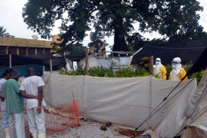 Ebola: la Guinée-Bissau rouvrira ses frontières avec la Guinée le 9 décembre