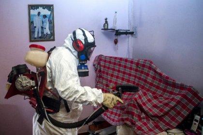 Chikungunya: comment remobiliser les Antilles contre l'épidémie