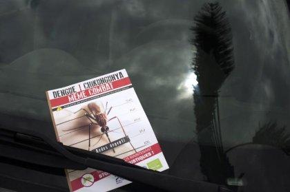 Guadeloupe: 6 décès en lien avec le chikungunya