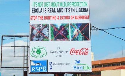 Ebola: la capacité du crematorium de Monrovia dépassée, selon la Croix-Rouge