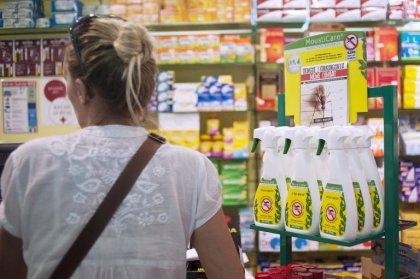 Chikungunya: polémique sur l'utilisation en Guyane d'un insecticide
