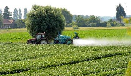 Pesticides: L'interdiction près des écoles et hôpitaux est une