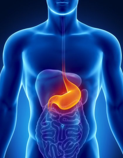 Saignement digestif haut
