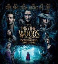 Rendez-vous le mois prochain... Into The Woods, Promenons-nous dans les bois