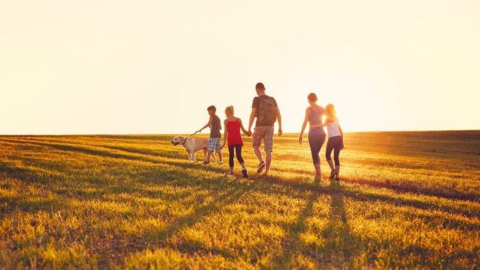 TFX, Familles nombreuses : la vie en XXL, 13h30 - 14h30, Divertissement, Accéder à la TV en direct