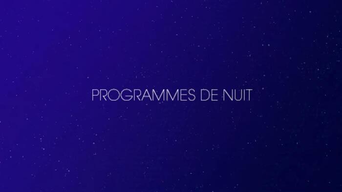 TF1, Programmes de nuit, 2h45 - 6h30, Accéder à la TV en direct