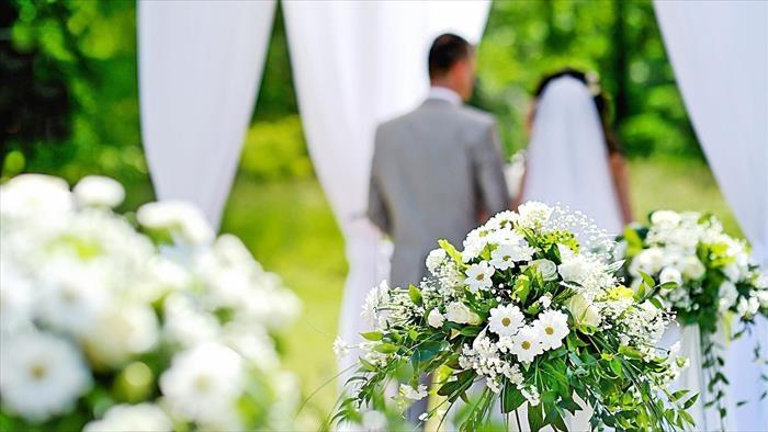 TF1, Quatre mariages pour une lune de miel, 18h10 - 19h00, Divertissement, Accéder à la TV en direct