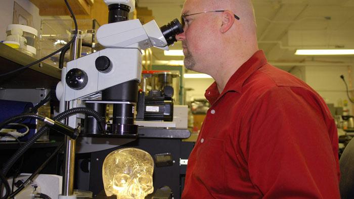 Toute la vérité sur : Le crâne de cristal