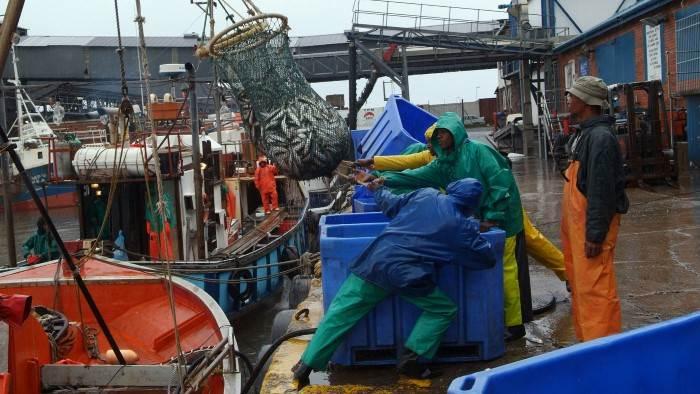 L'impact du Sardine Run sur l'océan