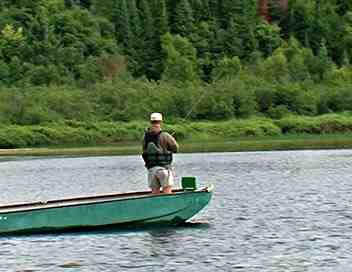 L'art de la pêche
