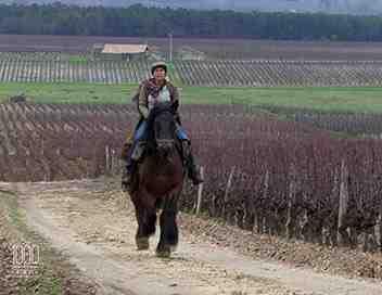 1000 kilomètres à cheval