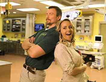 Docs à Busch Gardens