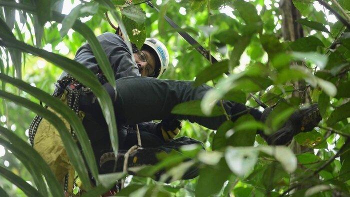 ARTE, Papouasie, un dernier éden, 18h10 - 18h55, Documentaire, Accéder à la TV en direct