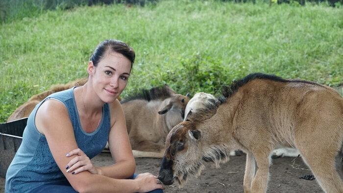 Refuges pour animaux sauvages