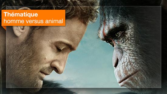 homme versus animal