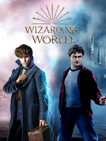 Les héros Wizarding World