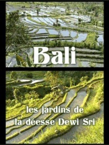 Bali - Les jardins de la déesse Dewi Sri