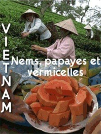 Carnets d'Asie: Vietnam - Nems, papayes et vermicelles