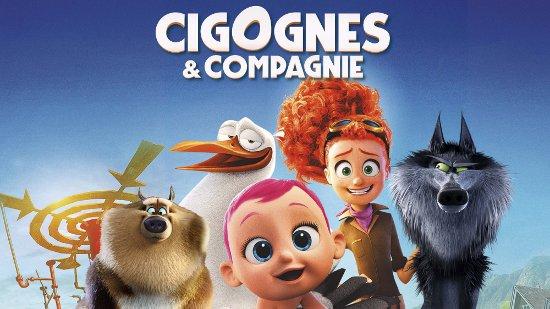 Cigognes & compagnie