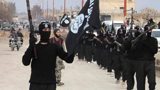 Daech, naissance d'un état terroriste