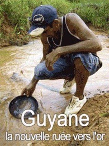 Guyane - La nouvelle ruée vers l'or