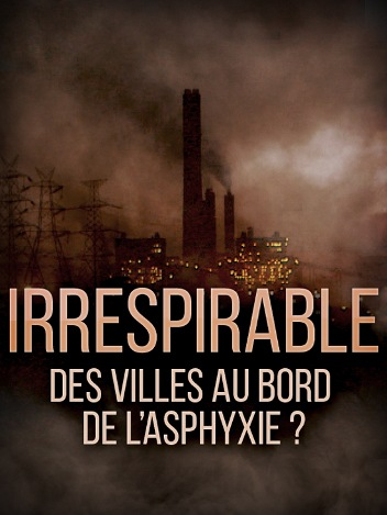 Irrespirable, des villes au bord de l'asphyxie ?