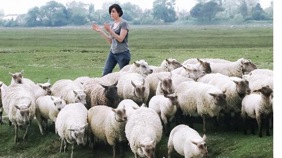 Jeune bergère