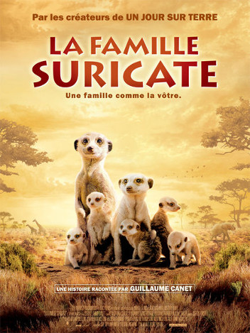 La famille suricate
