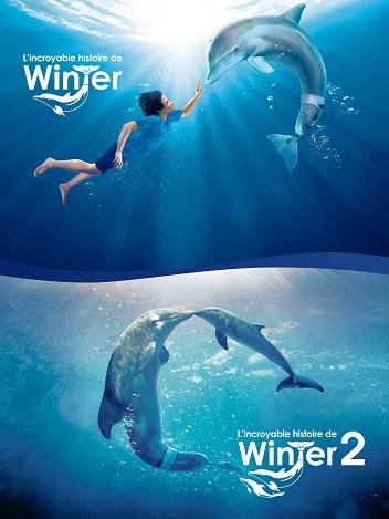 Collection L'incroyable histoire de Winter le dauphin