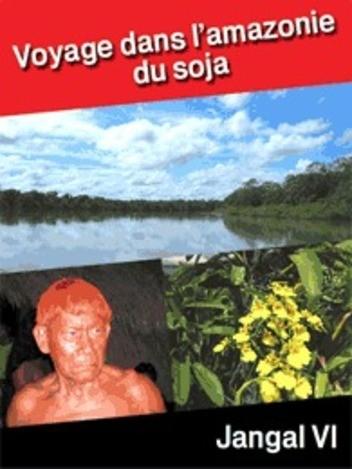 Voyage dans l'Amazonie du soja
