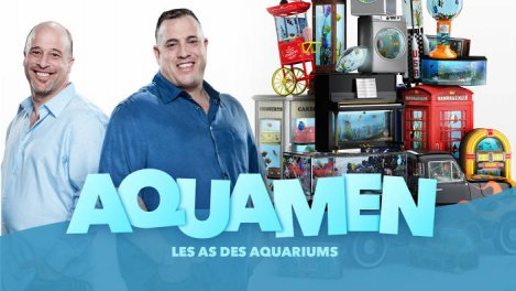 Aquamen : les as des aquariums