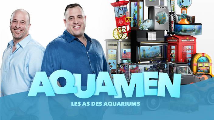 L'aquarium connecté