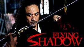 image du programme Flying Shadow