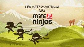 image du programme Les Arts Martiaux Des Mini Ninja