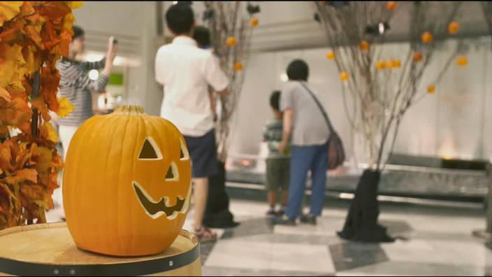 41. Halloween, une Tradition Américaine Importée